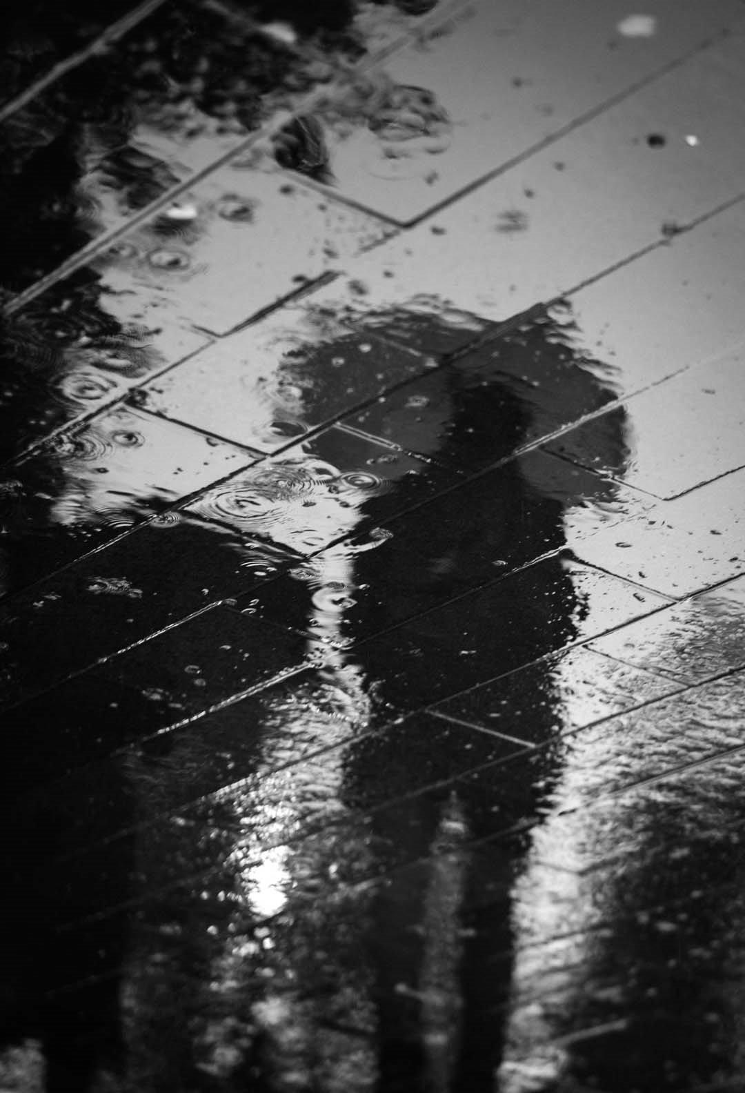 rainy pavement - Wallect