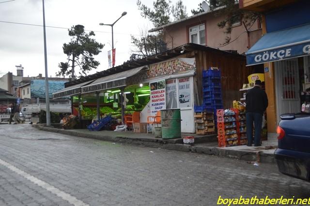 mantar3