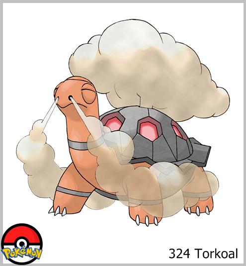 324 Torkoal