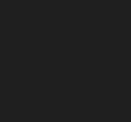 ui-icons_1f1f1f_256x240
