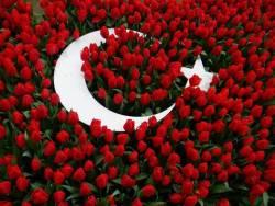 turk-bayragi-guller-arasinda