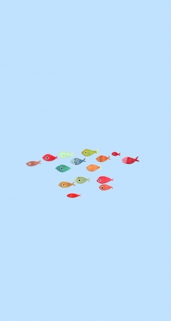 colorful fish shoal